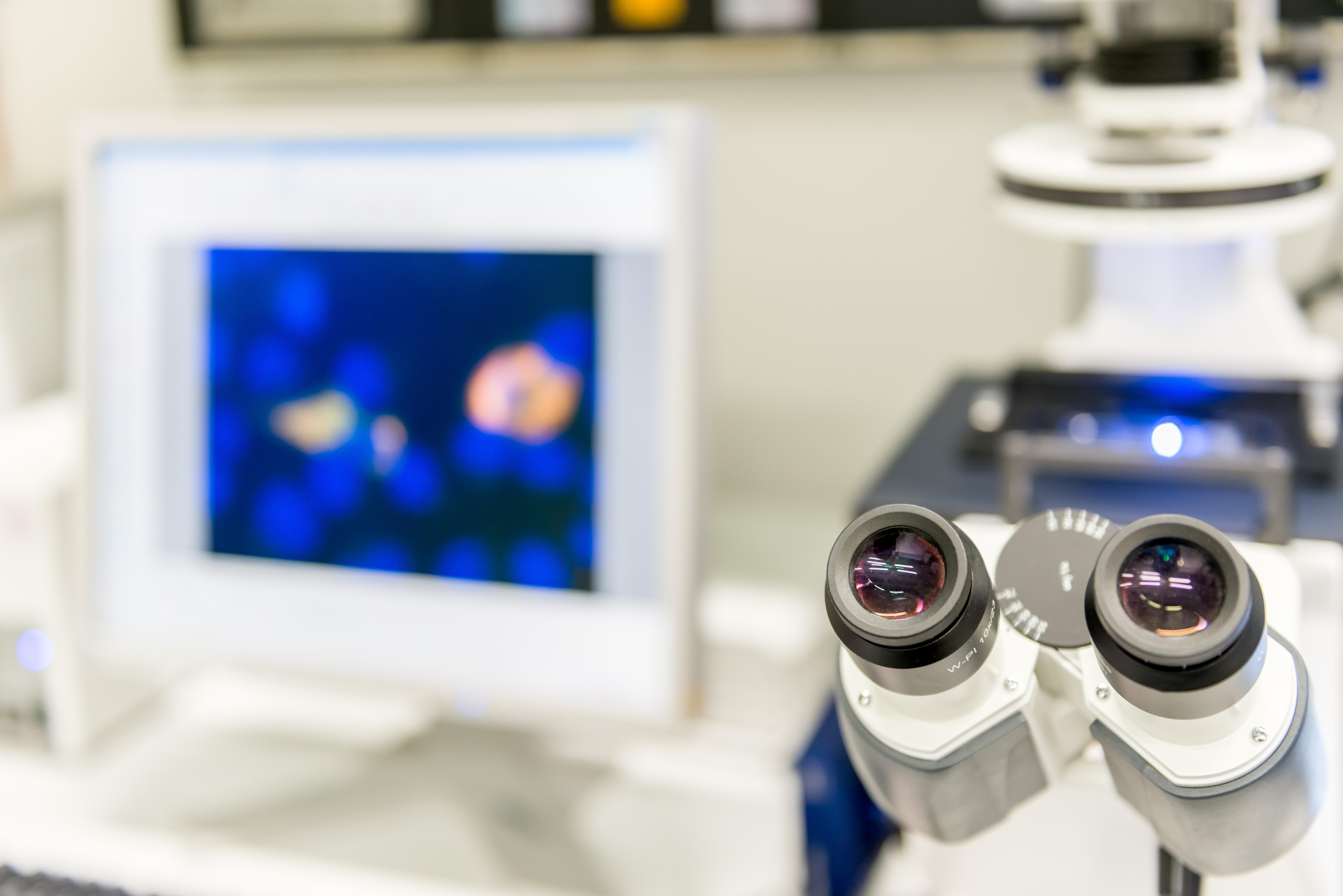 Institut für Humangenetik: Prof. Zerres