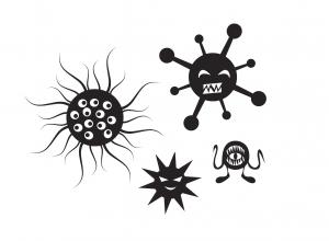 Kampf der Giganten_Bakterien_Viren