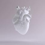 Herzerkrankungen im Fokus – Nachgefragt bei Prof. Nikolaus Marx