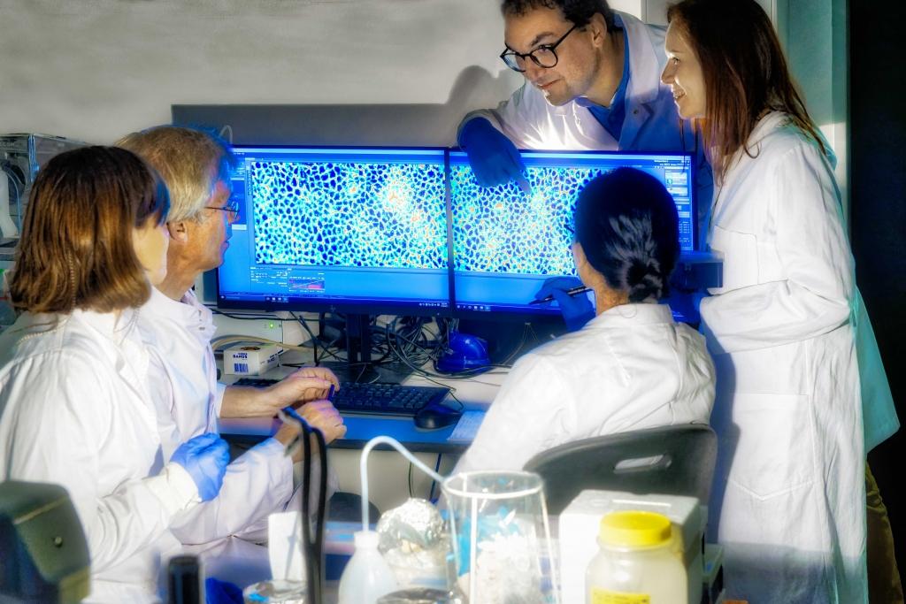 Bild 1: Mechanobiologische Eigenschaften von Gewebeverbänden werden mit aufwendigen Visualisierungsverfahren sichtbar gemacht. Die Ergebnisse müssen in interdisziplinären Teams diskutiert und kritisch bewertet werden. (Foto: Peter Winandy)