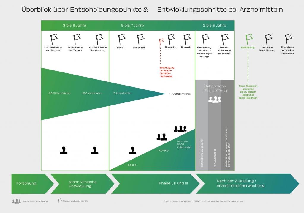 Überblick über Entscheidungspunkte & Entwicklungsschritte bei Arzneitmitteln